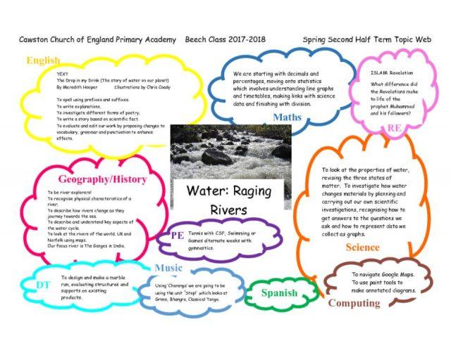 thumbnail of Beech Class T2b Topic web Water