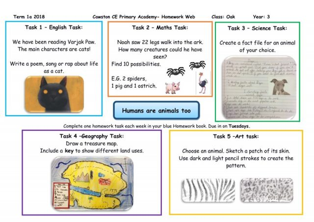 thumbnail of Oak Class Yr 3 Homework Web 1A Humans