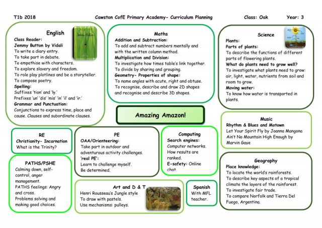thumbnail of Oak Class Yr 3 Topic Web 1B Amazon